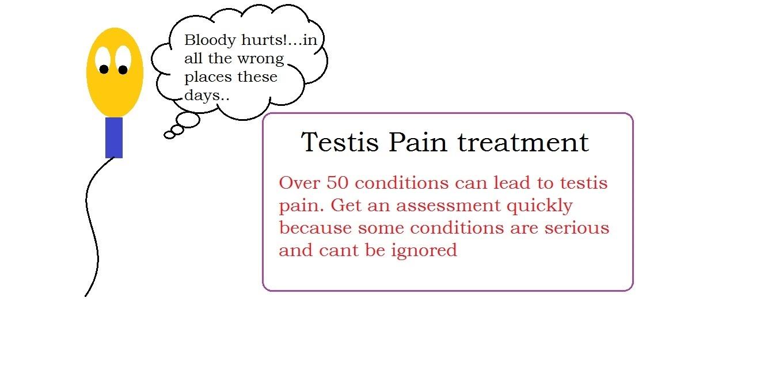 Testis pain management   male infertility treatment