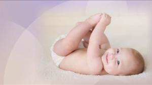 fertility-process